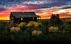 ONCE ... (Aspenbreeze) Tags: cabin oldcabin logcabin sunset dusk twilight sundown field flowers evening natural nature coloradolandscape beverlyzuerlein aspenbreeze moonandbackphotography