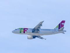 Flying (Voando) (José Rasquinho) Tags: plain avião tap fly céu sky