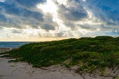 SouthPadreIsland_189 (allen ramlow) Tags: south padre island texas tx sony alpha landscape seascape beach gulf coast clouds water sand sunrise sun