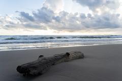 SouthPadreIsland_183 (allen ramlow) Tags: south padre island texas tx sony alpha landscape seascape beach gulf coast clouds water sand sunrise sun