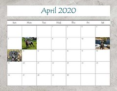 "2020 Calendar FINAL_Page_09 • <a style=""font-size:0.8em;"" href=""http://www.flickr.com/photos/109220014@N05/49123808428/"" target=""_blank"">View on Flickr</a>"