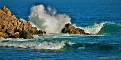November25Image9717 (Michael T. Morales) Tags: pacificgrove loverspointpark waves