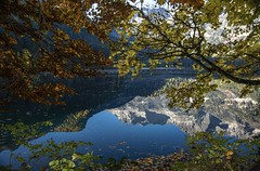 Colori diversi (giannipiras555) Tags: lago colori foglie foliage natura panorama alberi montagna riflessi autunno nikon trentino