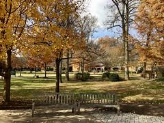 Garrison Forest School (karma (Karen)) Tags: garrisonforest owingsmills maryland schools campus buildings trees fallcolors shadows benches iphone hbm htmt