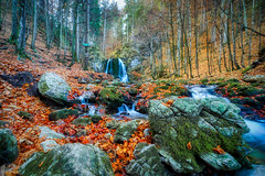 Water Falling At Josefstal (orkomedix) Tags: canon eosr samyang 14mmf28 wide angle germany autumn colors waterfall josefstal schliersee bavaria water small river photowalk leaves trees woods outdoor