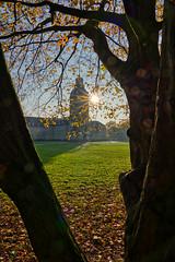 Schloss Karlsruhe (KaAuenwasser) Tags: schlosskarlsruhe schlossturm schlossgarten baum bäume park garten ort platz stelle sonnenstrahlen sonnenstern stern wiese rasen licht 2019 herbst historisch karlsruhe