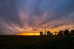 Watching the Sky - 7:12 (tquist24) Tags: hdr indiana nikon nikond5300 outdoor clouds color colorful evening farm field geotagged grainsilo landscape longexposure outside rural silhouette sky soybeans sunset tree trees