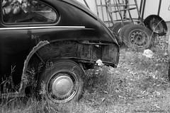 Volvo Pv 444! (petergranström) Tags: volvo pv 444 car auto bil veteranbil window fönster ruta tire däck