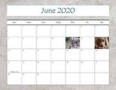 "2020 Calendar FINAL_Page_13 • <a style=""font-size:0.8em;"" href=""http://www.flickr.com/photos/109220014@N05/49124491322/"" target=""_blank"">View on Flickr</a>"