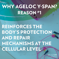 Why ageLOC Y-Span? (nuskinpacific) Tags: ageloc yspan vitality youth pharmanex skin care body pills supports metabolism glucose reinforce protection repair mechanism cellular level promotes blood vessel elasticity essential healthy circulation pressure regulation reasons why immune response function nutrients blend unique cognition memoery dna damage joints fluidity