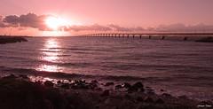 Le pont de l'île de Ré !!! (François Tomasi) Tags: françoistomasi 2019 îlederé