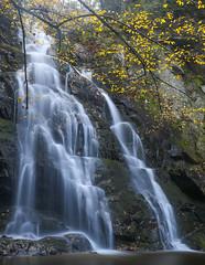 Falls (SDRPhoto321) Tags: great smoky mountains national park water falls fall
