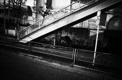 (ademilo) Tags: street streetphotography streetlight tokyo town townscape transportation japan monochrome monotone blackandwhite