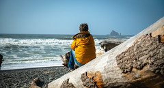A Man Taking In The Scene - Rialto Beach - Olympic National Park - September 2019 (Chad Baxter) Tags: nikon d850 2485mm g rialto beach national park forest water rock rocks sand ocean pacific sky sea seagull olympic blue green red yellow orange man jacket rain sun scenic coast fish marine life waves tidepools tide pools trees bark wood