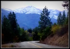 Twisp River road - snow ahead (edenseekr) Tags: twispriver valley snowy mountains evergreens northcascadeswa okanogannationalforest photopainting