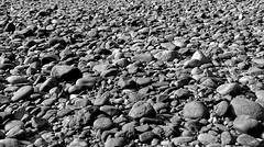 The Impact of Less with Rocks (Black & White) (thor_mark ) Tags: alaska2019 alongbanksofriver azimuth212 bigstones blackwhite day5 dxophotolab3edited ideasigotfromothers imagecapturewitharsenal landscape lookingsw nature nikond800e outside portfolio project365 riverbanks stonesalongriverbanks sunny talkeetnamountains talkeetnariverfrontpark witharsenal talkeetna alaska unitedstates