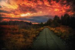Autumn Sunset (Jorge Falck Photography) Tags: hazylandscape norsklandskap norwegianlandscapes countrysidelandscape landscapephotography landscape ngc nature clouds dramaticlandscape dramatic cinematic cinematiclandscapes cinematiclandscape sunset sunlight norway landscapes canon6d canonphotography