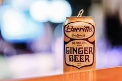 Barritt's Ginger Beer (dangaken) Tags: barrittsgingerbeer barritts ginger beer gingerbeer bokeh lights night bar can yellow orange mackinawcitymi upnorth northern northernmichigan tab mixeddrink cocktail alcohol drink fuji fujinon fujifilm fujixf56mmf12r fujinonxf56mmf12r fujifilmxf56mmf12r xf56mmf12r fujixf56mmf12 56mm prime primelens lowlight dark wideaperture fujifilmxt2 xt2 bermudastone beercan