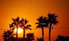 Amanecer (portalealba) Tags: torredelmar axarquía málaga andalucía españa spain sunrise portalealba canon eos1300d sol