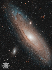 M31-The Andromeda Galaxy (7H 43M exposure) (Dark Arts Astrophotography) Tags: astrophotography astronomy andromeda asi1600mc night nature natur nightscape nebula nightsky ngc nikon celestron sky skywatcher space stars star science astrometrydotnet:id=nova3765516 astrometrydotnet:status=solved