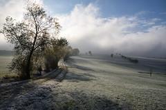 Quand le brouillard se lève (Excalibur67) Tags: nikon d750 sigma globalvision 24105f4dgoshsma sigmaart paysage landscape arbres trees ciel sky brouillard fog givre automne autumn alsace nature chemin