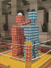 20191125_185210 (Kevin Borland) Tags: canstruction art cannedgoods districtofcolumbia usa