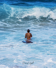 Waiting For the Wave (Darrell Wyatt) Tags: oahu wave beach surf hawaii