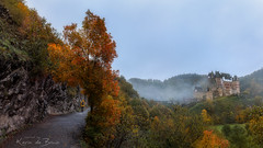 Burg Eltz! (karindebruin) Tags: geel burg eltz forest trees bomen germany duitsland bos meisje girl yellow mist fog herfst autumn castle