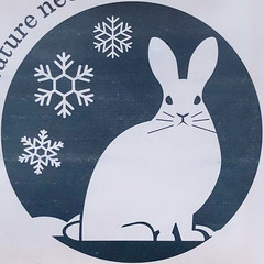 (Na)   ture ne   (eds you) (Timothy Valentine) Tags: 1119 massaudubon envelope snowflake rabbit logo 2019 home squaredcircle eastbridgewater massachusetts unitedstatesofamerica