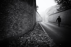 autumn (Sandy...J) Tags: atmosphere alone atmosphäre allein autumn monochrom man mono mood mauer walking wall blackwhite bw germany deutschland fotografie photography fuji xt100 herbst city light licht noir urban street streetphotography sw schwarzweis strasenfotografie stadt silhouette shadow darkness stimmung augsburg altstadt
