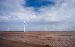 Wind field on the sea (Cadicxv8) Tags: vietnam wind electricity water sea sky mekong mud simple flood cloud