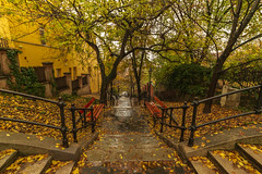 Krisztinavaros (Behind Budapest) Tags: 2019 365project 70d budapest canon hungary krisztinavaros magyarorszag autumn autumnfoliage city colours fall lepcso nopeople outdoor outdoors outside stair streetphoto streetphotography town urban 250v10f