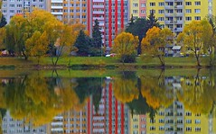reflections (majka44) Tags: reflections mirror architecture water lake colors tree light 2019 košice slovakia autumn nature red yellow landscape green grass mood building facade windows waterscape