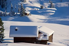IMGP3723 Snow time (Claudio e Lucia Images around the world) Tags: alpedisiusi valgardena dolomiti alpe di siusi val gardena snow winter mountains adler lodge ortisei sassolungo sassopiatto sky christ cross pentax pentaxk3ii pentaxcamera pentaxlens pentaxart cold unesco pentax18135 gröden sciliar clouds tree sella sellagroup snowstorm sunrise woods
