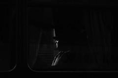 Pasajeros (natan_salinas) Tags: bw blackwhite streetphotography bn blanconegro fotografíaurbana fotografíacallejera street portrait urban blackandwhite blancoynegro monochrome 50mm calle nikon gente retrato urbano urbe monocromático d5100 city light shadow people luz face noiretblanc cara streetportrait ciudad valparaíso sombras rostro valpo retratocallejero retratourbano chile windows man male window look ventana passengers mirada hombre miradas pasajeros