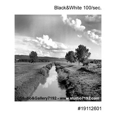 Small river, grassland and the trees - This black and white photo is NOT sharp due to camera characteristic. Taken on film with a medium format camera (jbeugephoto) Tags: nature river water landscape grassland tree view grass natural environment outdoor beautiful sky field scenery summer travel meadow scenic countryside rural small land cloud medium format film black white
