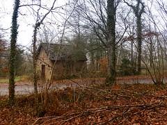 La maison qui était près de la route (v o y a g e u r) Tags: house maison casa autumn fall trees foliage road way sony november