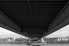 Sonntagsspaziergang in der Südstadt (weber.bert) Tags: köln analogefotografie blackwhite inbiancoenero noiretblanc grauwertabstufungen sw
