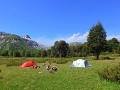 Campamento en coiguería. (Mono Andes) Tags: andes chile chilecentral ñuble reservanacionalñuble regióndeñuble campamento trekking volcánchillán backpacking tallo martina caroc