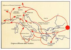 origine e diffusione della viticoltura (Sparkling Wines of Puglia) Tags: vite originevite diffusionevite illustrated illustraciones illustrazioni illustrations illustration