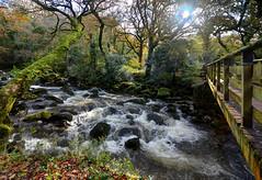 The River Plym near Shaugh Prior, Dartmoor (Explored) (Baz Richardson) Tags: devon dartmoor shaughprior nationaltrust goodameavyestate riverplym rapids footbridges rivers explored
