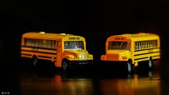 School Bus - 7764 (✵ΨᗩSᗰIᘉᗴ HᗴᘉS✵84 000 000 THXS) Tags: transport crazytuesdaytheme crazytuesday yellow bus belgium europa aaa namuroise look photo friends be yasminehens interest eu fr party greatphotographers lanamuroise flickering two duo deux panasonic panasonicgx9