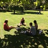 Trainees picnicking in the park opposite TEFL Toulouse