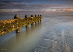 Rough smooth rough (Through Bri`s Lens) Tags: beachlowtide sussex groynes weed lowtide lowtidereflection leelittlestopper smooth clouds brianspicer canon5dmk3 canon1635f4