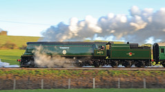 Steam Leak (Treflyn) Tags: panned shot pan panning bulleid battle britain class 462 pacific 34072 257squadron steam harmans cross swanage railway southern timeline events tle photo charter leak