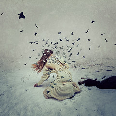 crystalline (brookeshaden) Tags: butterflies butterfly metamorphosis crystalline snow fineartphotography surrealism selfportrait fog conceptual compositing photoshop