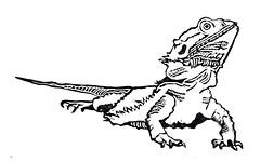 Bearded Dragon - Mini Print (lwdphoto) Tags: lance duffin lancewadeduffin lanceduffin miniprint blockprint print printmaking ink art linocut stamp beardeddragon lizard