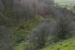 GreenGutter (Tony Tooth) Tags: nikon d600 nikkor 50mm f18g countryside landscape clough brook greengutter gradbach staffs staffordshire staffordshiremoorlands england november