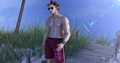 Feeling the Breeze (ThiegoFire) Tags: realevil td exclusive signature catwa yu sun blue sky male men man boy fashion sl secondlife sexy beach bridge hair mom shorts blog