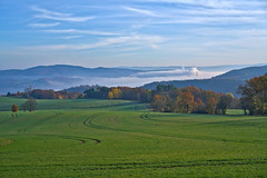 Trails (pstenzel71) Tags: aussicht deutschland landschaft rudolstadt feld field trail spur darktable thüringen thuringia nebel fog herbst autumn fall ilce7rm3 sel55f18z mist misty